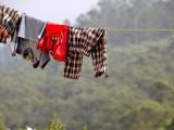 Vårda kläderna miljövänligt