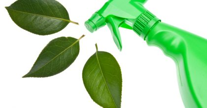 Green Spray Bottle with Leaf Spray for Environmentally Friendly Natural Cleaning Concepts.  Isolated on White with a Clipping Path.